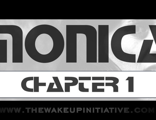 DF60 / The Wake Up Initiative – Monica chapter 1